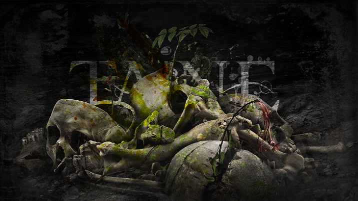 Taine - Romanian progressive metal since 1993 - Official Website